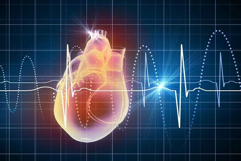 ضربان قلب نرمال چند است دکتر سعید یزدانخواه فوق تخصص قلب و عروق در تهران